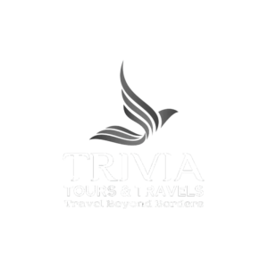 Trivia | portfolio